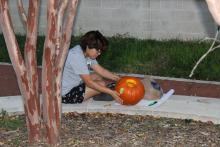 Student carving pumpkin by a tree
