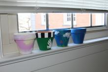 Several pots siting on the window seal