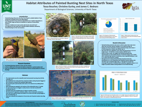Habitat Attributes of Painted Bunting Nest Sites in North Texas