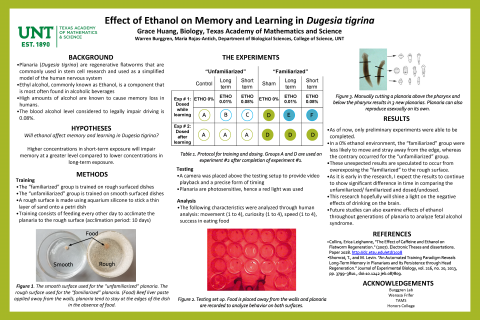Effect of Ethanol on Memory and Learning in Dugesia tigrina