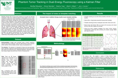 Phantom Tumor Tracking in Dual-Energy Fluoroscopy using a Kalman Filter