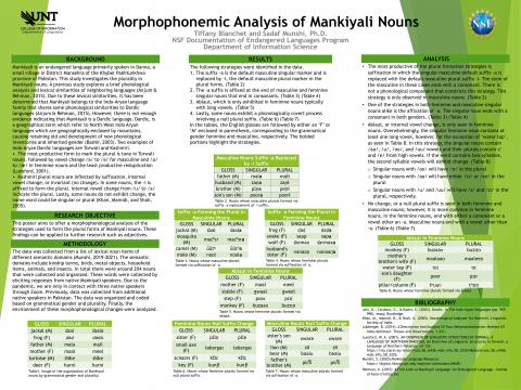 Morphophonemic Analysis of Mankiyali Nouns
