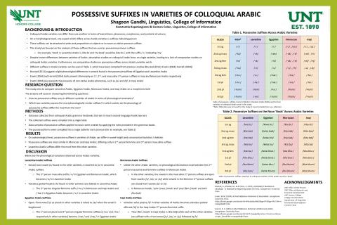 Possessive Suffixes in Varieties of Colloquial Arabic