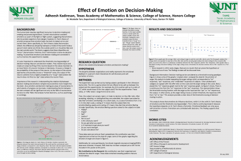 Effect of Emotion on Decision-Making