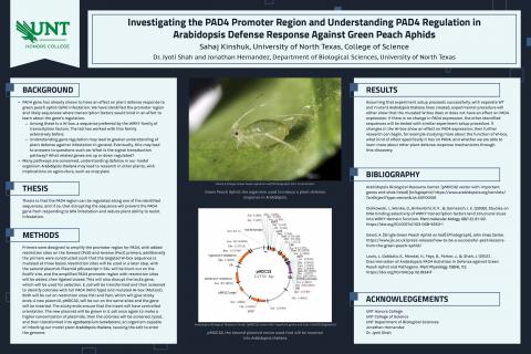 Investigating the PAD4 Promoter Region and Understanding PAD4 Regulation in Arabidopsis Defense Resp