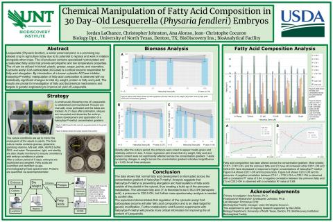 Chemical Manipulation of Fatty Acid Composition in 30 Day-Old Lesquerella (Physaria fendleri) Embryo