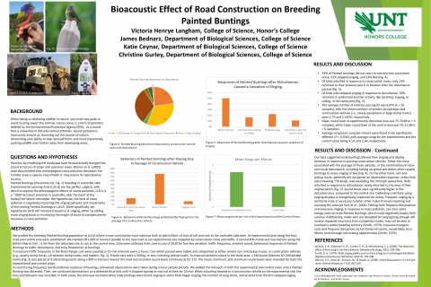 Effect of Road Construction on Breeding Painted Buntings