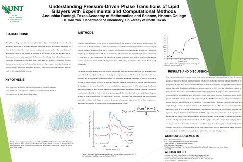 Understanding Pressure-Driven Phase Transitions of Lipid Bilayers with Experimental and Computationa