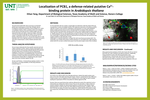 Localization of PCB1, a defense-related putative calcium-binding protein in Arabidopsis thaliana