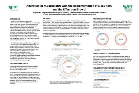Alteration of M.capsulatus with the Implementation of E.coli RelA  and the Effects on Growth